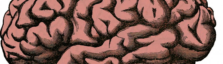 El déficit de psicólogos clínicos expertos en neuropsicología en el sistema público de salud